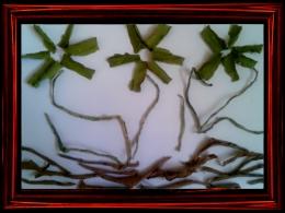 Dried Vegetable's Skin Art:D
